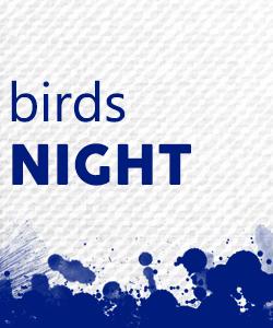 06-birds-night